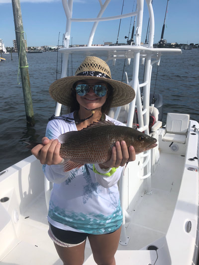 Destin florida Inshore bay fishing charters